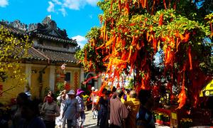 Du lịch Đài Loan chi tiết cho người chưa đi lần nào