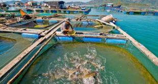 [XKLĐ ĐÀI LOAN] Tuyển 130 lao động làm thủy tinh tại nha máy Hoa Hạ TÂN TRÚC 2020