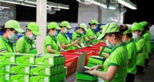 [XKLĐ ĐÀI LOAN] Tuyển 04 nam làm sản xuất linh kiện ô tô, xe máy tại nhà máy Vạn Tấn ĐÀI NAM 2020