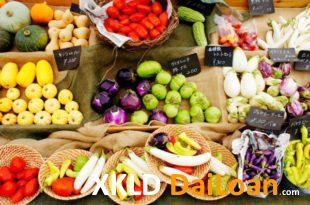 [XKLĐ ĐÀI LOAN] CLIP đáng kinh ngạc mô hình nông nghiệp Nhật Bản – trồng rau ít Kali 2020