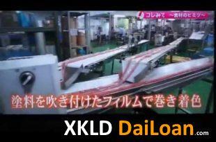 [XKLĐ ĐÀI LOAN] [CLIP] Sự thật về công việc của lao động Việt trong các cty thực phẩm Nhật Bản 2020