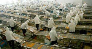 [XKLĐ ĐÀI LOAN] Tuyển 08 nam làm thao tác máy giặt tại nhà máy Cẩm Cửu ĐÀI NAM 2020