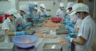 [XKLĐ ĐÀI LOAN] Tuyển 03 nam làm thao tác máy may tại nhà máy Quán Đạt ĐÀI BẮC, tuyển dụng qua form 2020
