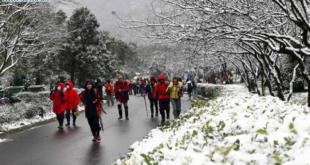 [XKLĐ ĐÀI LOAN] Các mùa ở Đài Loan – đi Đài Loan mùa nào đẹp nhất? 2020