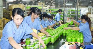 [XKLĐ ĐÀI LOAN] Tuyển 29 nam nữ làm thực phẩm nhà máy Huệ Khang Đài Bắc 2020